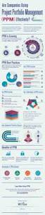 343 best business project management images on pinterest are companies using project portfolio management ppm effectively infographic