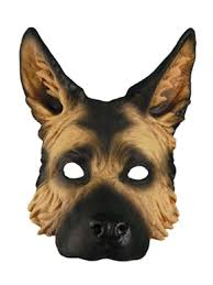 Big Dog Halloween Costume 10 Big Dog Halloween Costumes Images Pet