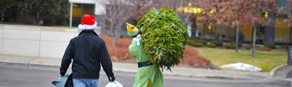 christmas tree delivery minneapolis st paul christmas tree delivery set up