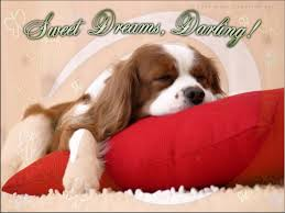 sweet dreams cards and greetings wooinfo