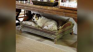 Dog Beds Made Out Of End Tables Easy Diy Dog Bed Southern Living