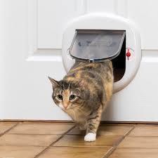 4 way locking big cat door by petsafe ppa00 11326