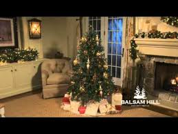 balsam hill color clear lights balsam hill fraser fir christmas tree multi color lights full view