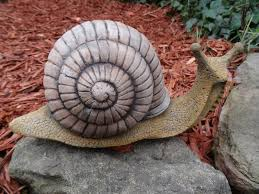 antique style large finished snail shell garden