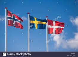scandinavian flags of norway sweden denmark stock photo royalty