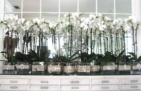 wedding decorations for sale wedding plan ideas