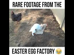 rare footage from the easter egg factory youtube