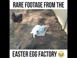 Easter Egg Meme - rare footage from the easter egg factory youtube