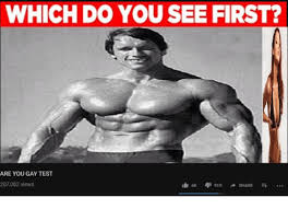 You Gay Meme - which do you see first are you gay test 207082 views test meme on