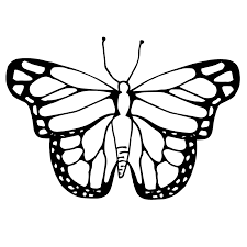 butterfly clipart coloring u0026 worksheets