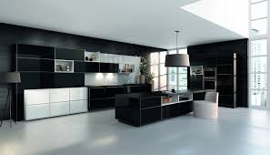 Kitchen Built In Shelves Kitchen Ceramics Varnished Kitchen Cabinet And Counter Also