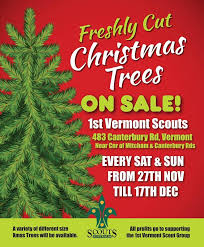 1st vermont scouts group home facebook