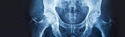 Abdominal Anatomy Quiz Living Anatomy With Ultrasound Abdomen Quiz 1 50 Qu Dr S Quiz