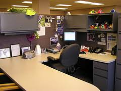 What Plants Are Cubicle Friendly by Sick At Work Prevent Spread Of Germs In Your Office Cubicle U0026 Desk