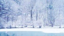 nature wintry weather really pretty snow lake trees nature photo