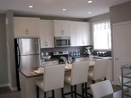Galley Kitchens Ideas Kitchen Wonderful Galley Kitchen Ideas With Black Floor Small