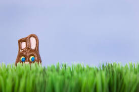 What Do The Colors Of The Italian Flag Mean Easter Bunny The Origins Of Easter Day U0027s Rabbit Time