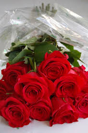 how much is a dozen roses how to arrange a dozen roses even if they didn t come with any