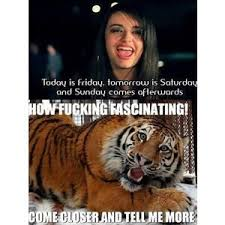 Today Is Friday Meme - image 175717 rebecca black friday know your meme