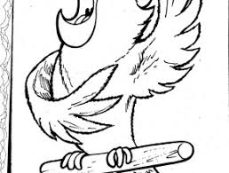 pirtate parrot colouring pages pirate parrot coloring