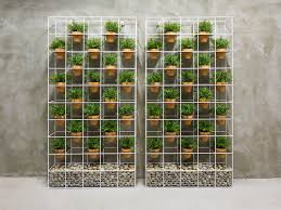 19 wall herb planter new dome terrarium home growing kit
