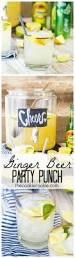 ginger beer party punch recipe ginger beer