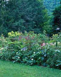 Flowers Gardens And Landscapes by Garden Tour An Edible Landscape Martha Stewart