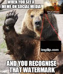 Bear Memes - you be all like hey guy imgflip