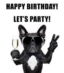Happy Birthday Meme Dog - joke4fun memes happy birthday you party animal