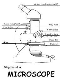 diagram of a microscope by sciencedoodles on deviantart