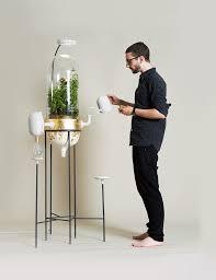 hotel lexus lima tarifas teofilo net this tropical terrarium purifies your water