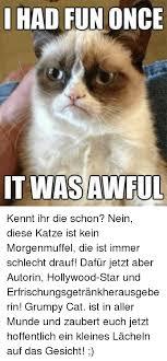Grumpy Cat Meme I Had Fun Once - had fun once it was awful had fun once it was awful meme on me me