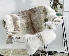 Reindeer Hide Rug Reindeer Hide Ebay