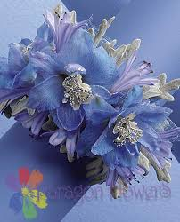 Corsages For Homecoming Homecoming Prom Flowers 2017 Corsage For Prom 2017 St Charles