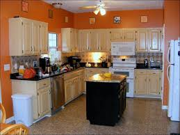 Best Color Kitchen Cabinets 100 Two Color Kitchen Cabinet Ideas Painting Kitchen