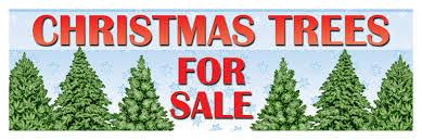 christmas tree on sale christmas decoration sale kennett beverage