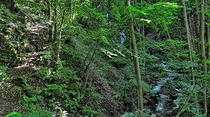 Bad Bertrich Klidinger Wasserfall Von Kennfus Nach Bad Bertrich