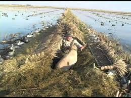 Ez Duck Blind Gibson Duck Blind Covers Youtube