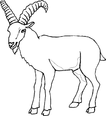 goat mask coloring page old goat coloring page get coloring pages
