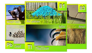 Learning The Periodic Table Learning With Memory Techniques The Periodic Table Of Elements