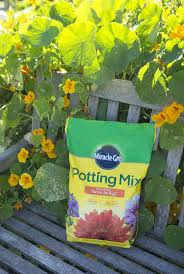 Miracle Grow Patio by The 25 Best Scotts Miracle Gro Ideas On Pinterest Winter