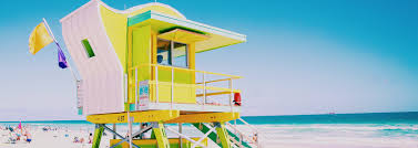 miami and the beaches the official miami and miami beach