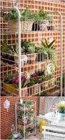 Herb Shelf Top 25 Best Wire Racks Ideas On Pinterest Wire Rack Shelving