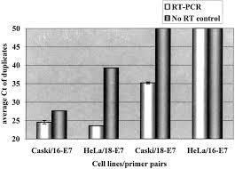 measurements of human papillomavirus transcripts by real time