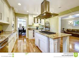 Built In Kitchen Islands With Seating Kitchen Room Custom Kitchen Islands Pictures Tips From Hgtv