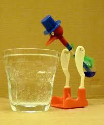 drinking bird wikipedia