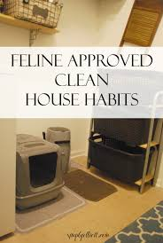 How To Keep A Clean House Feline Approved Clean House Habits Simply Elliott