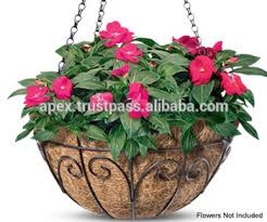 Best Plants For Hanging Baskets by Best Hanging Basket Plants And Small Scrubs Buy Coir Baskets For