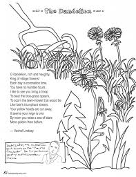 coloring page poems the dandelion by vachel lindsay and glum me