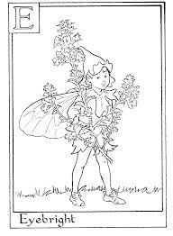 letter e for eyebright flower fairy coloring page fairy alphabet